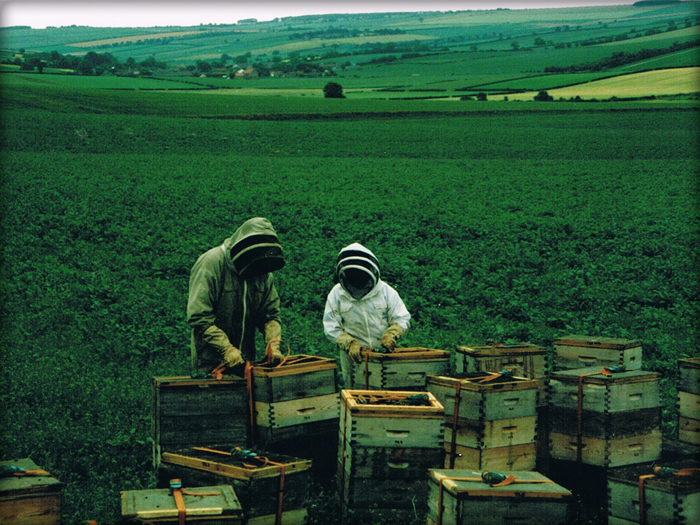Beekeepers at work.