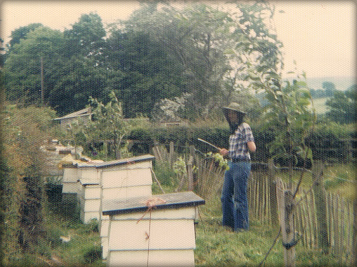 Original bee site with WBC hives.